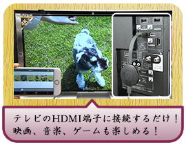 テレビのHDMI端子に接続するだけ!映画、音楽、ゲームも楽しめる!