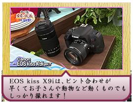 EOS kiss X9iは、ピント合わせが早くて お子さんや動物など動くものでもしっかり撮れます!