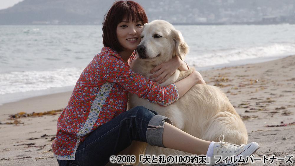シネマクラブ「犬と私の10の約束」