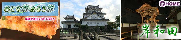 [2011.11.12]第134回「大阪 岸和田」