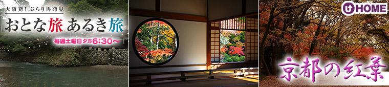 [2013.11.9]第228回「京都の紅葉」