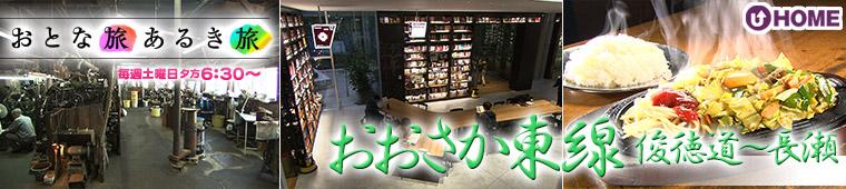 [2019.5.11]第492回「おおさか東線 俊徳道~長瀬」